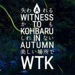 wtk_pressrelease
