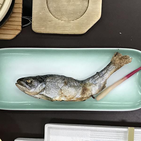 20170302_atimura_014