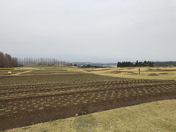 20170331_tokoro_kobayashi_101