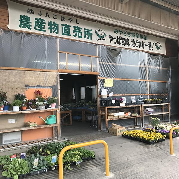 20170401_tokoro_kobayashi_001