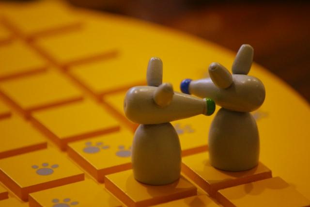 女子キャンプにオススメなボードゲームの画像
